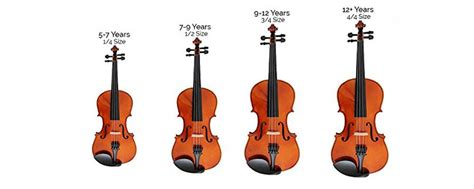 Size Guide for Violins, Violas and Cellos - Normans News