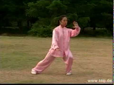 tai chi 24-form 1 - Introduction and History